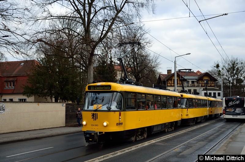 224 263 + 224 265 + 224 217 als Linie 11 an der Haltestelle Angelikastraße.