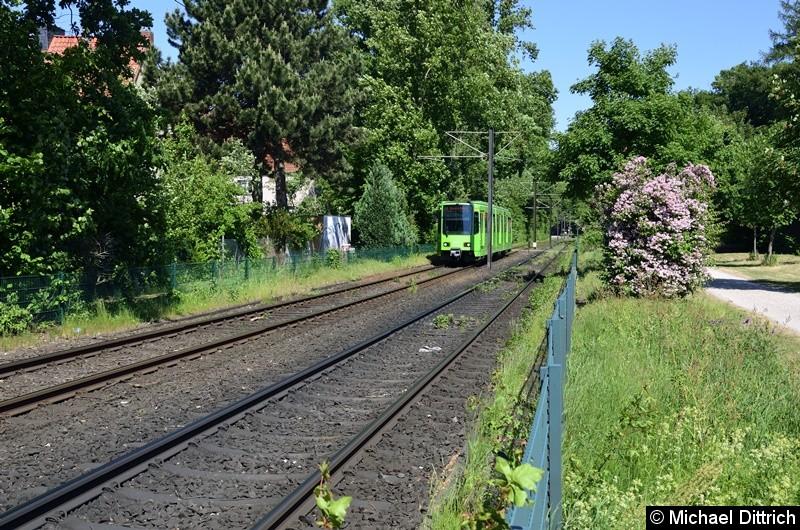 6224 als Linie 8 zwischen den Haltestellen Am Mittelfelde und Messe/Nord.