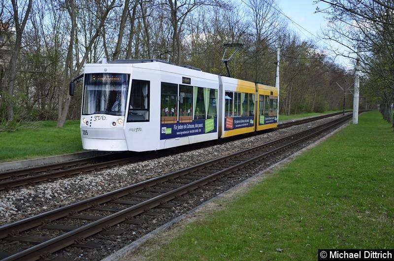 205 erreicht als Linie 3 die Endstelle Lusan, Zeulsdorf.