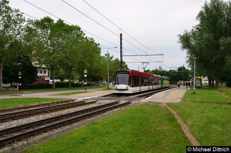 Combino 644 und 719 als Linie 2 an der Haltestelle Färberwaidweg.